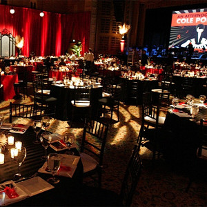 fundraiser_benefit_gala_entertainment_idea_coleporter